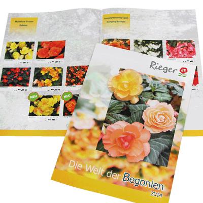Begonier Rieger-Prospekte-Werbeagentur-Priss